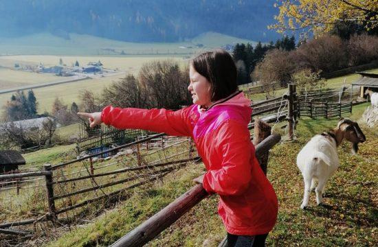 Hintnerhof in Pichl / Gsies - Südtirol