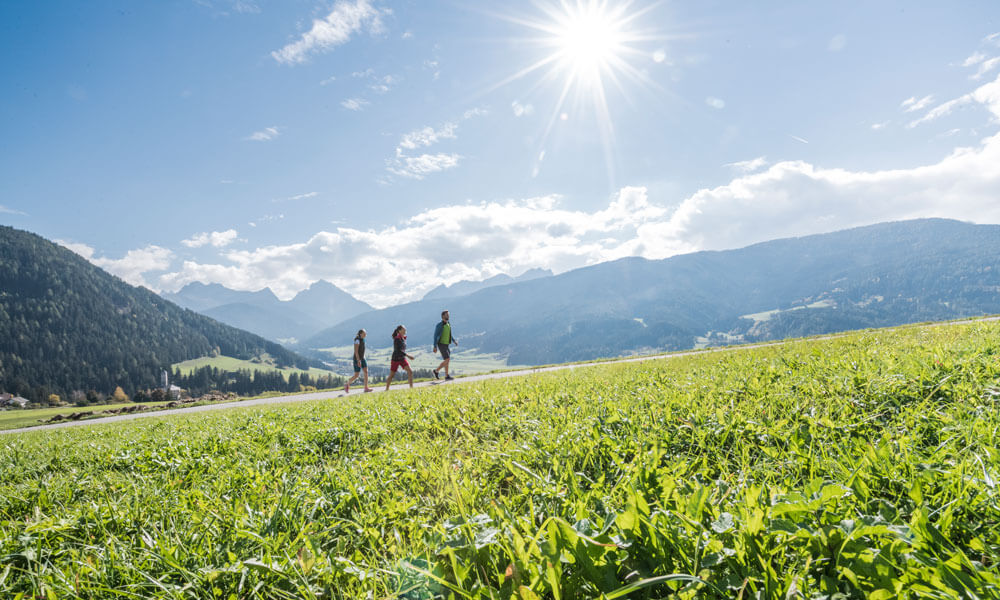 Enjoy your holiday in South Tyrol on the ORGANIC farm Hintnerhof in Valle di Casies